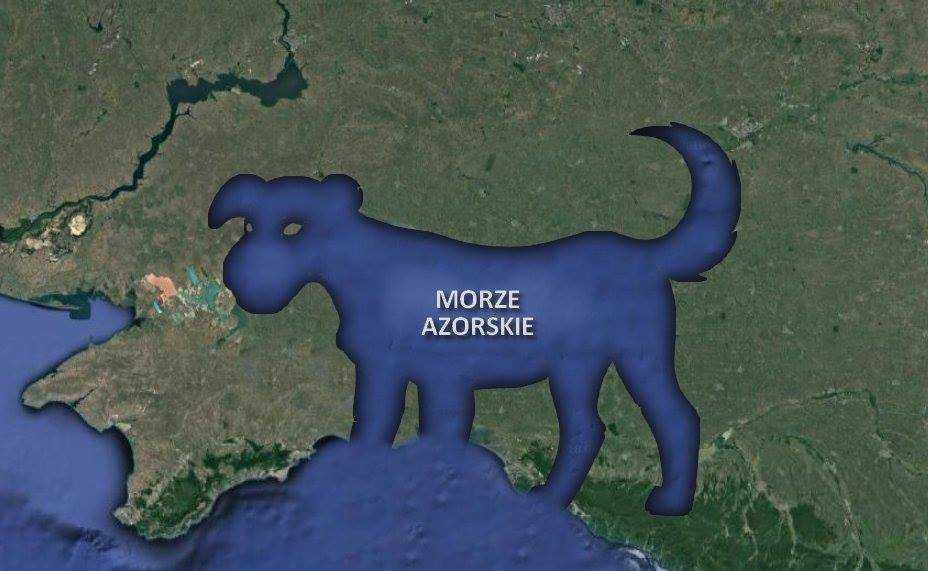 morze azorskie
