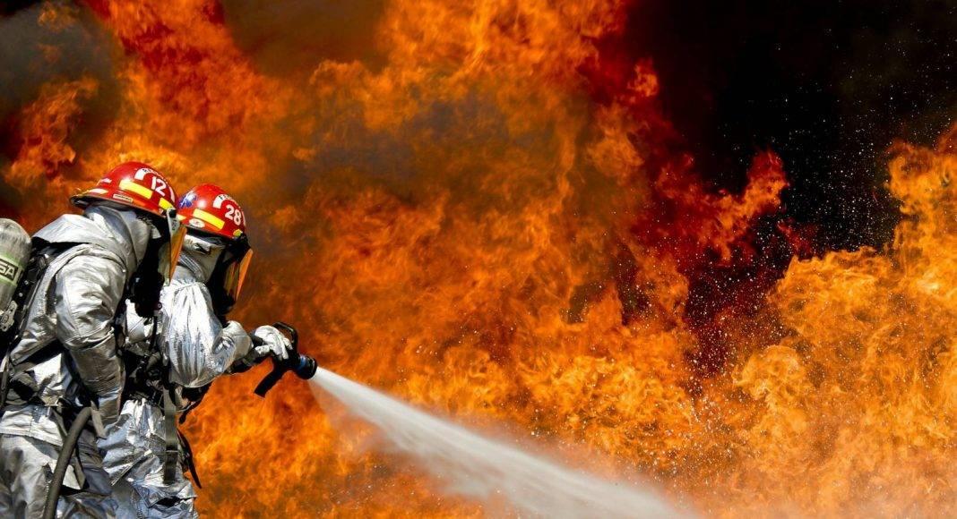 """Epidemia zwolnień w Straży Pożarnej. To zmutowany wirus """"psiej grypy"""" 1"""